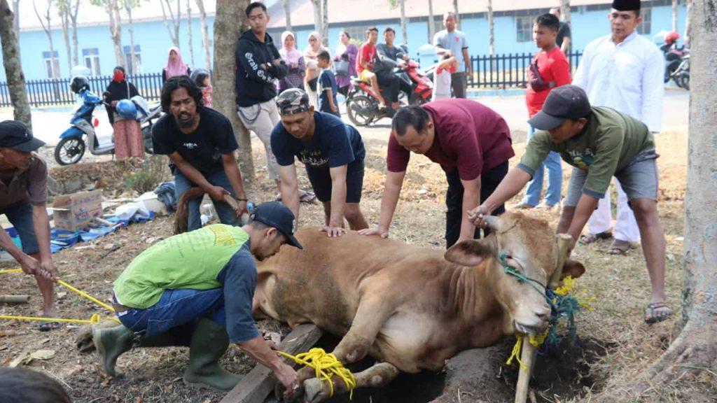 hewan qurban di Karawang
